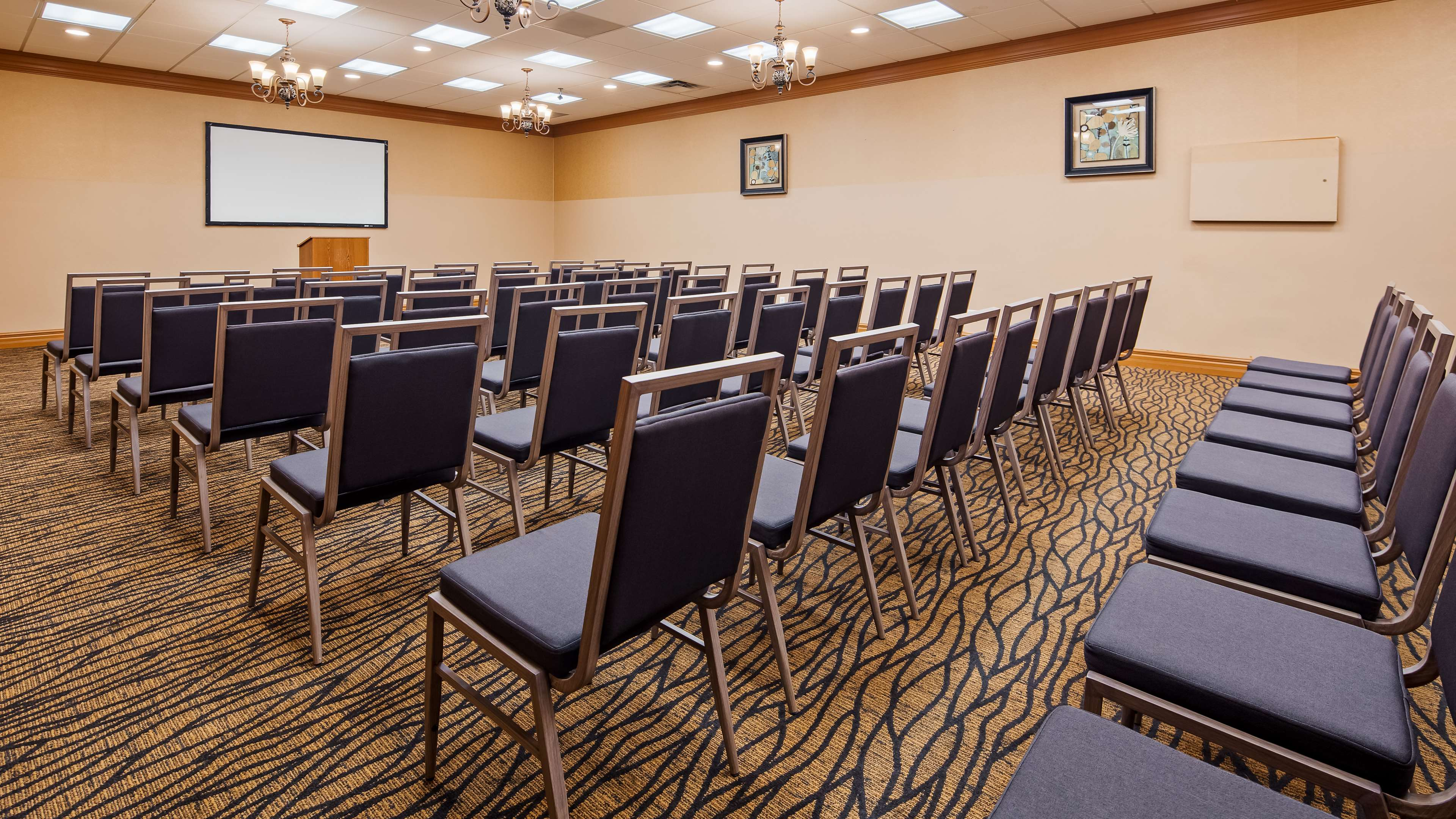Best Western Marquis Inn & Suites in Prince Albert: Meeting Room