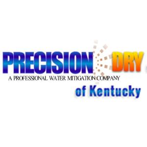 Precision Dry of Kentucky