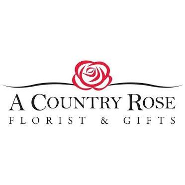 A Country Rose