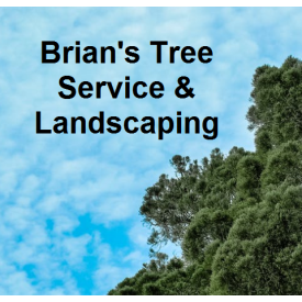 Brian's Tree Service & Landscaping