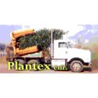 Plantex Enr