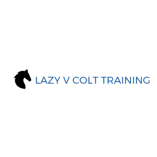 Lazy V Colt Training