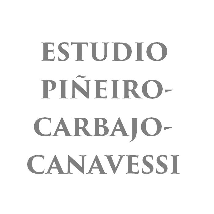 ESTUDIO PIÑEIRO-CARBAJO-CANAVESSI