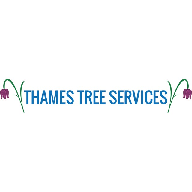 Thames Tree Services - Swindon, Wiltshire SN6 6QZ - 01793 751675 | ShowMeLocal.com