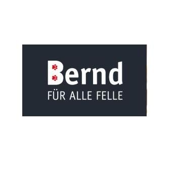 Bernd für alle Felle