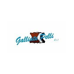 Galliate Pelli Srl
