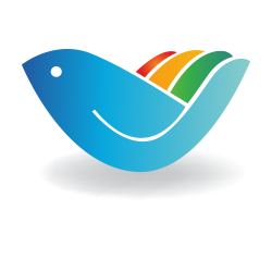 Rainbow Medical Supply
