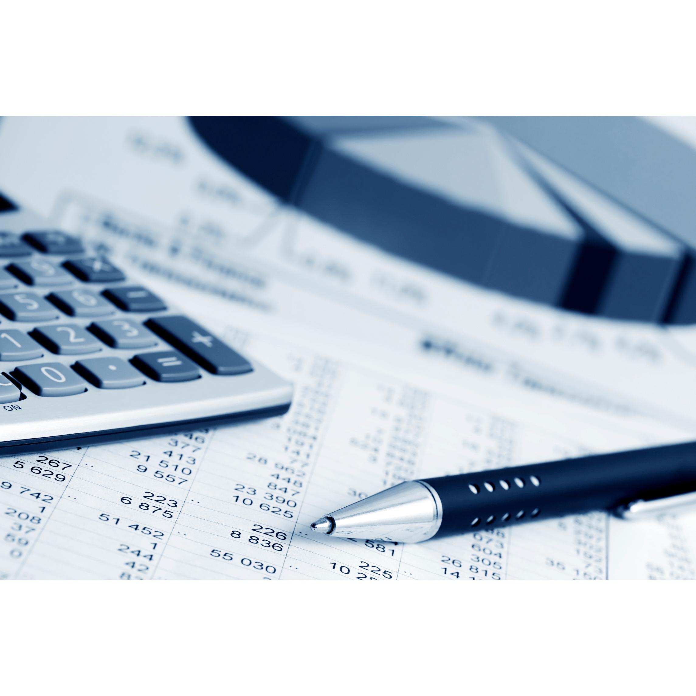 Master Tax Advisor, LLC