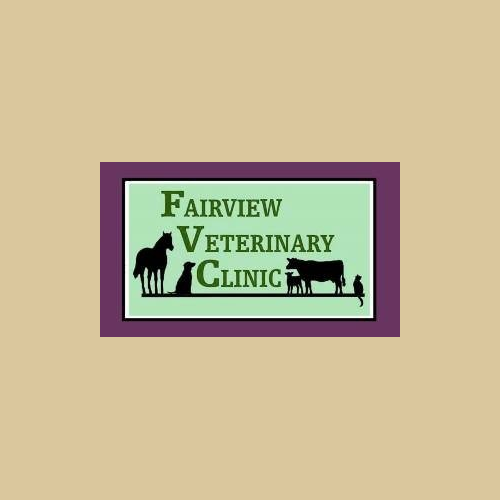 Fairview Veterinary Clinic