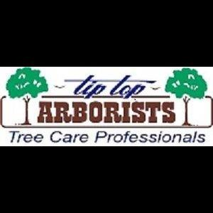 Tip Top Arborists - Lancaster, CA - Tree Services