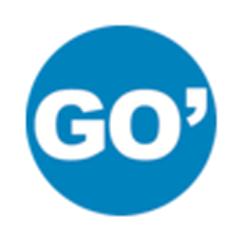 GO' Coaching with Susan Ginsberg-O'Sullivan