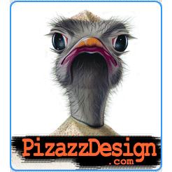 Pizazz Design