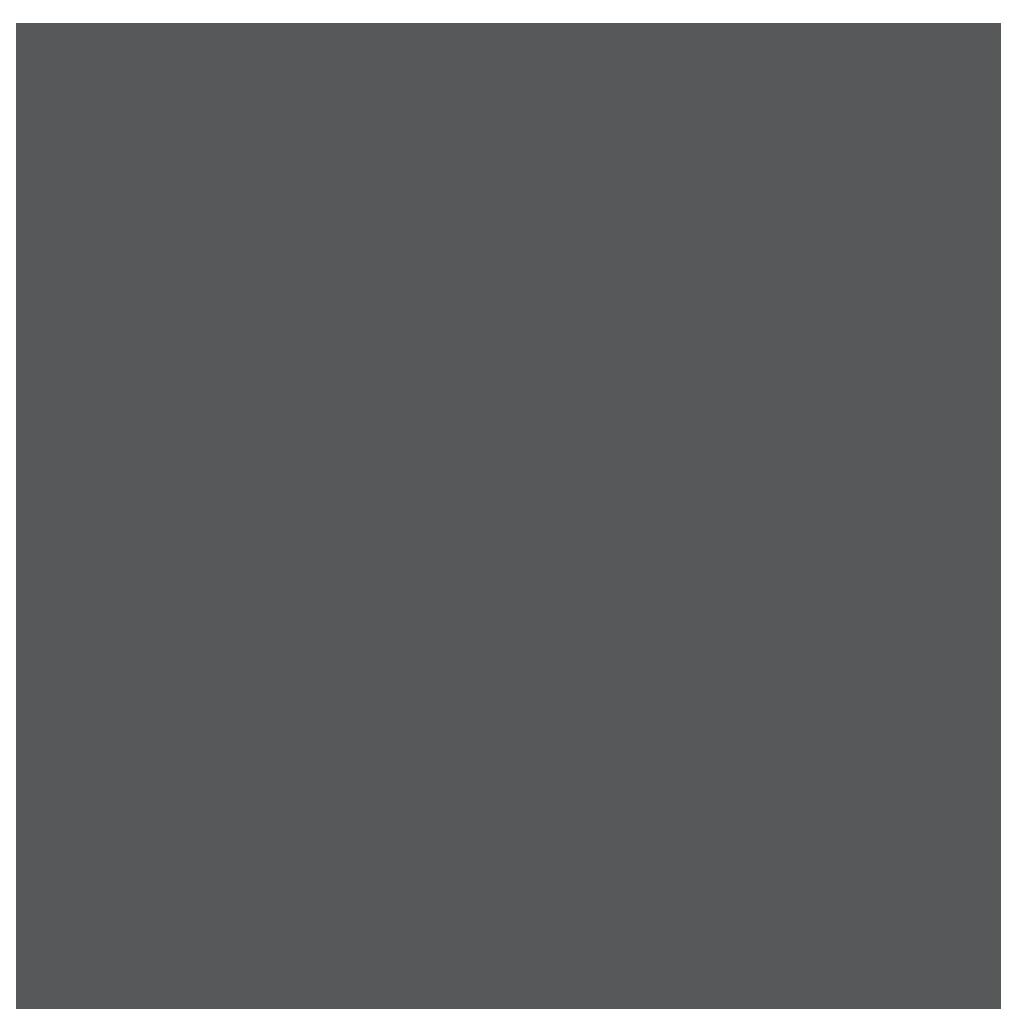 Black Bear Design - Charlotte - Charlotte, NC - Website Design Services