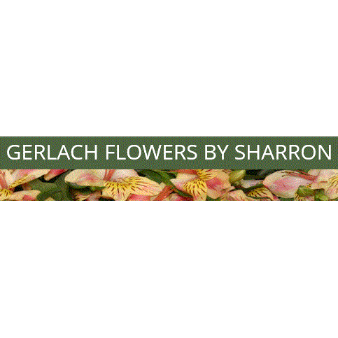 Gerlach Flowers By Sharron - Piqua, OH - Florists