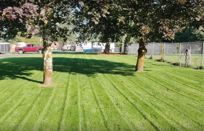 Madrid Lawn Service