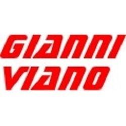 Viano Giovanni Vetraio