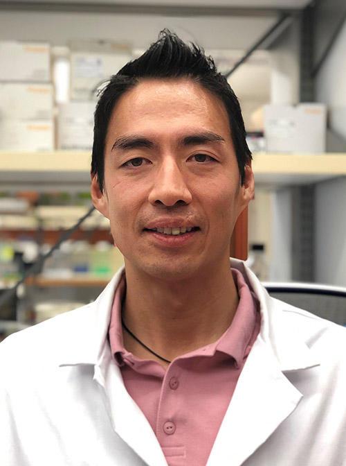 David H. Jang, MD