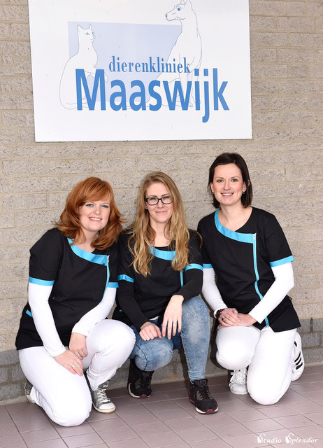 Maaswijk Dierenkliniek