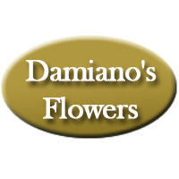 Florist in NY Amsterdam 12010 Damiano's Flowers 2 Hewitt St  (518)842-6653