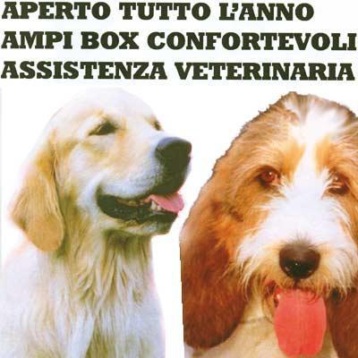 Oasi La Cascinetta Pensione per Cani