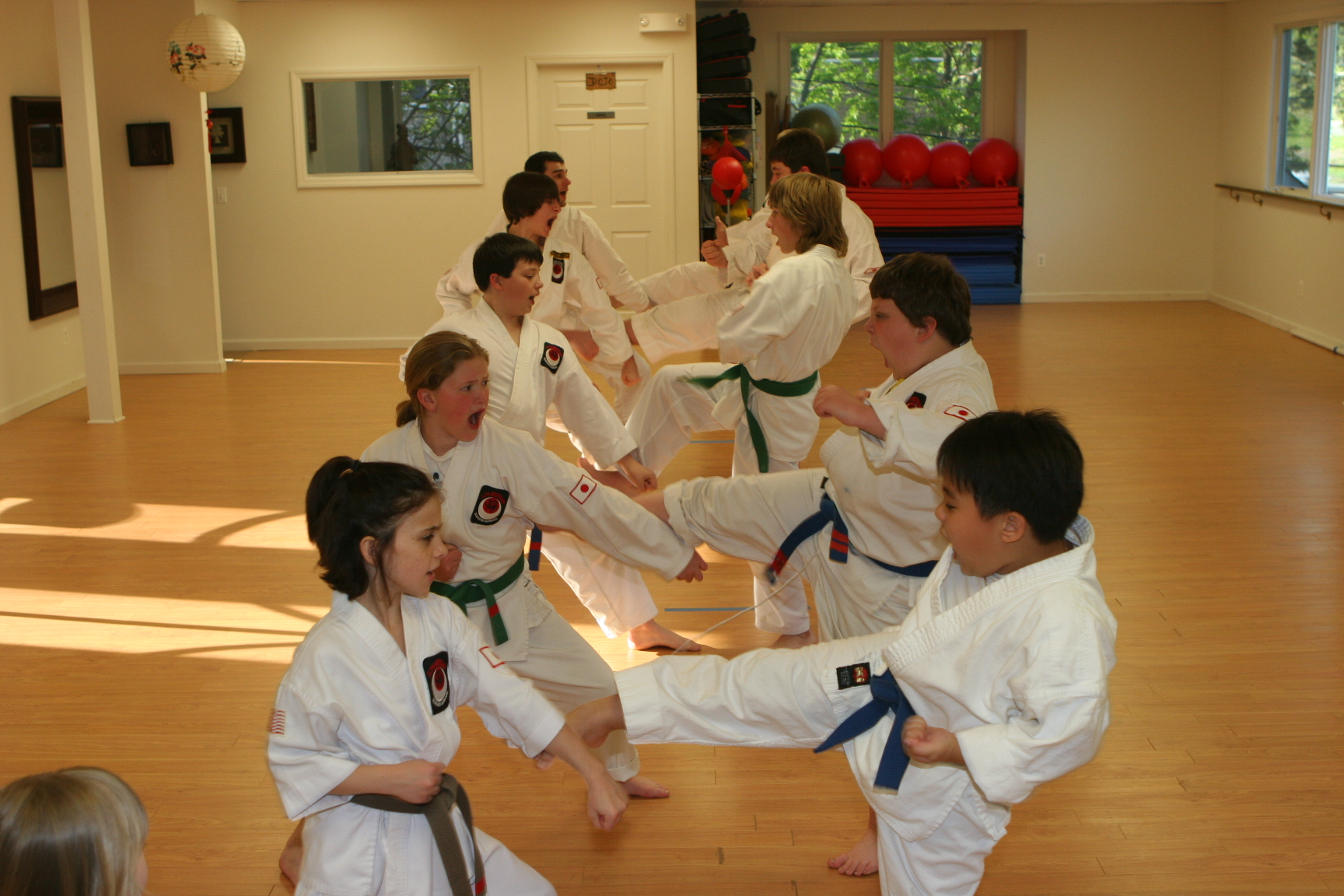 LT's Shotokan Karate