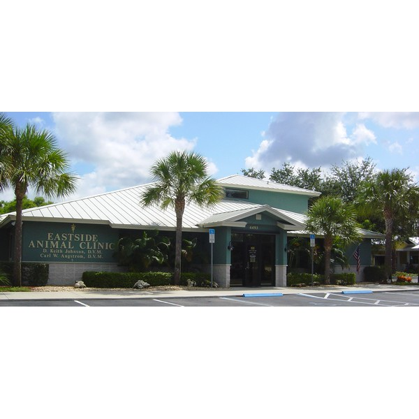 Eastside Animal Clinic - Naples, FL 34112 - (239)215-2630 | ShowMeLocal.com
