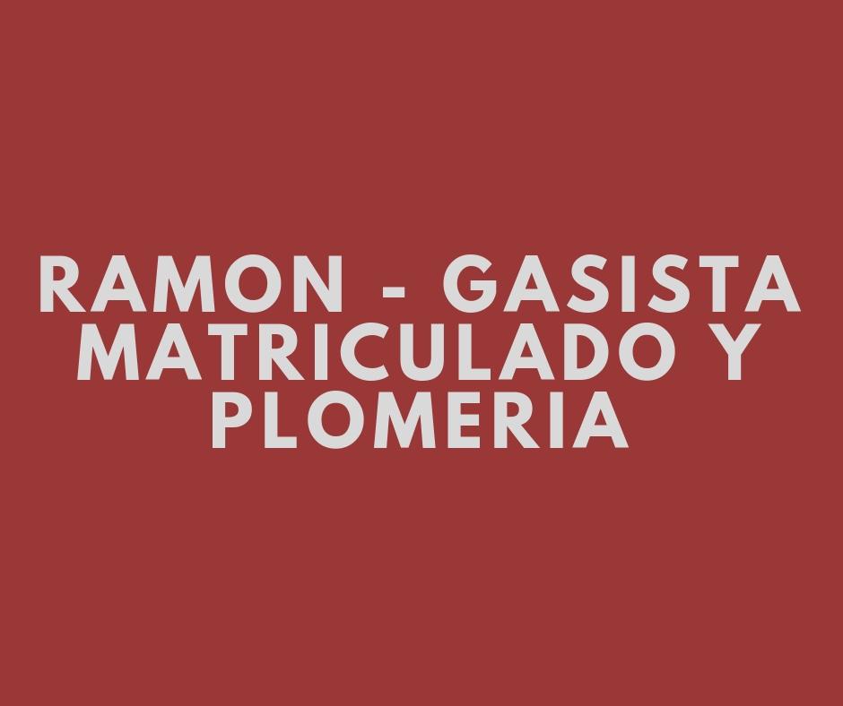 RAMON - GASISTA MATRICULADO Y PLOMERIA