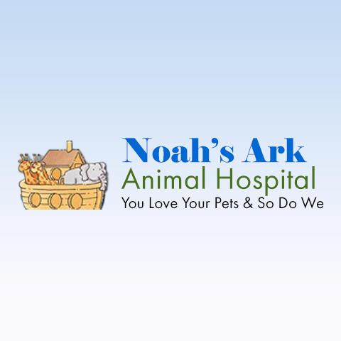 Image of: Edwardsville Il Noahs Ark Animal Hospital Noahs Ark Animal Hospital Veterinarians Lexington Kentucky