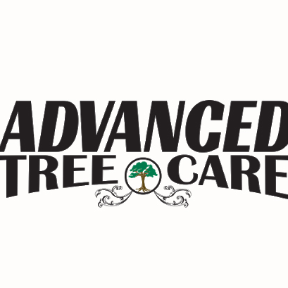 Advanced Tree Care dba Palms, Inc