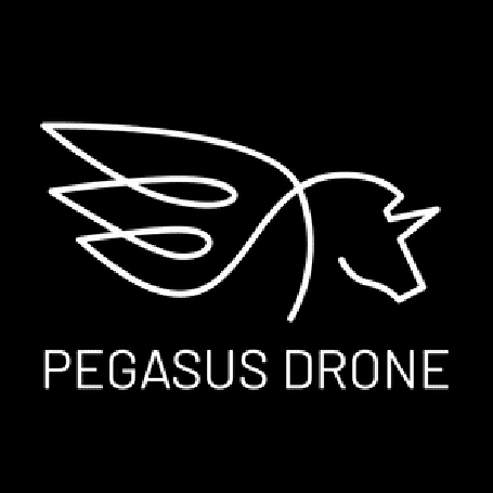 Pegasus Drone