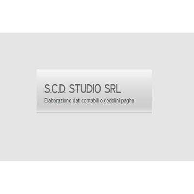 S.C.D. STUDIO