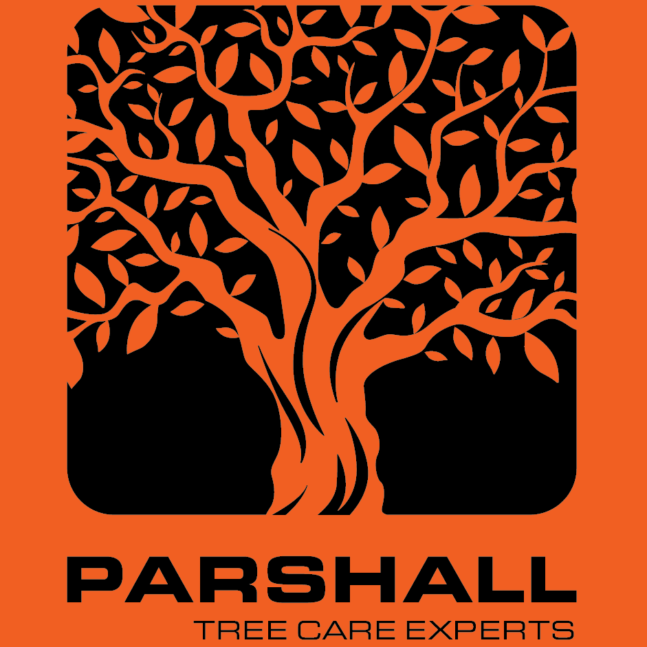 Parshall Tree Care Experts