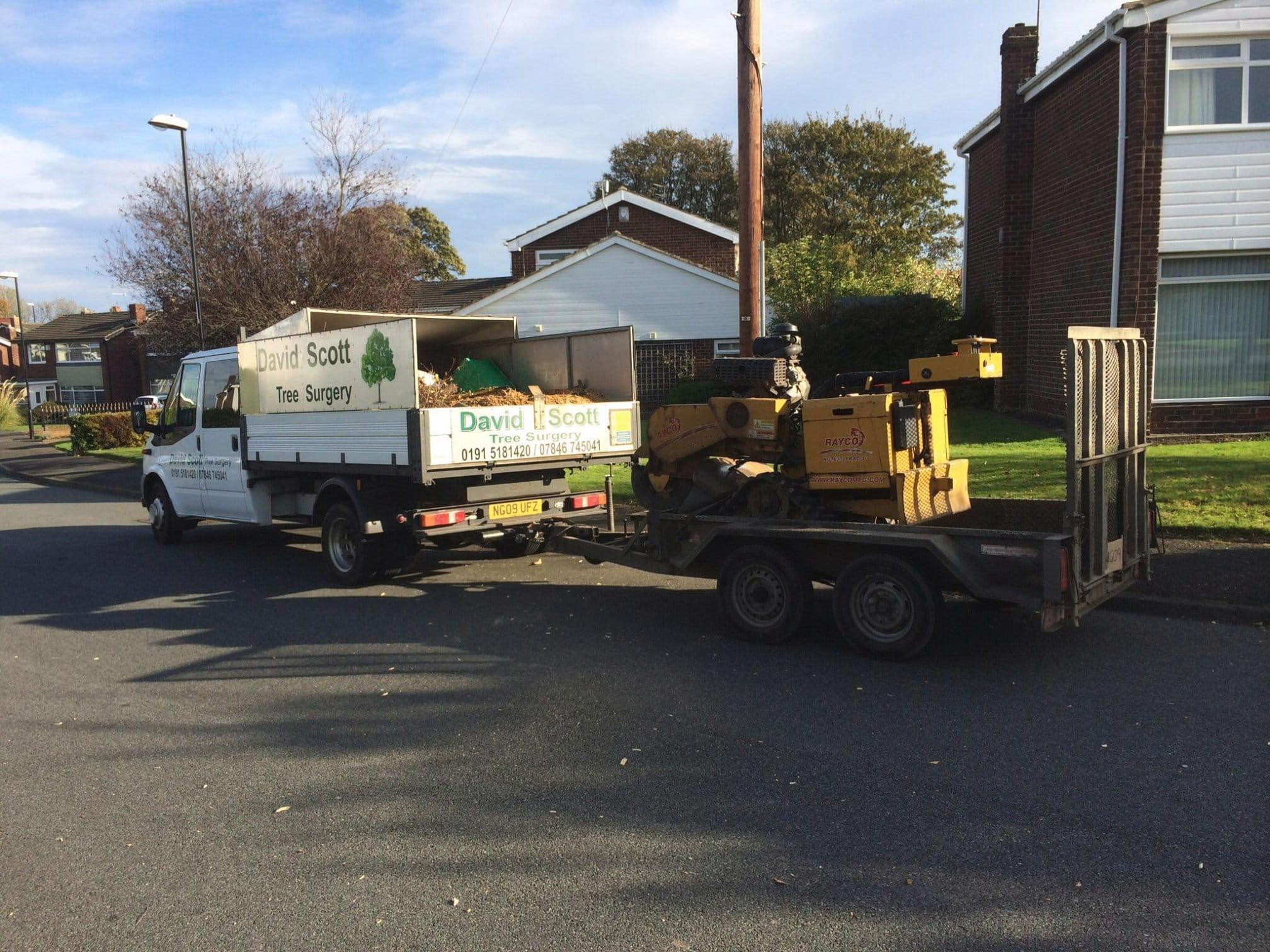 David Scott Tree Surgery & Garden Services