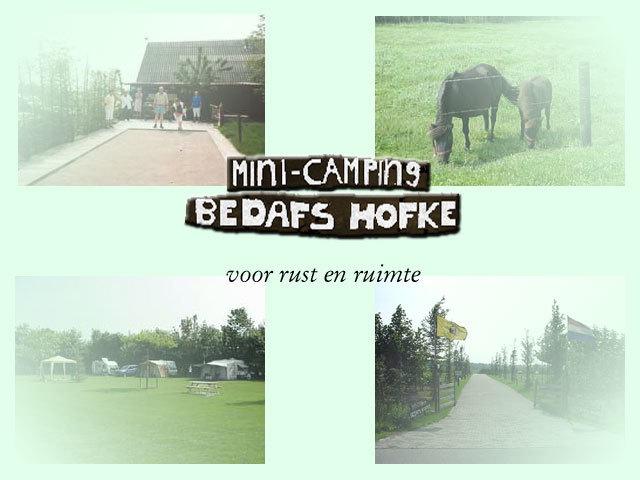 Bedafs-Hofke Mini-Camping