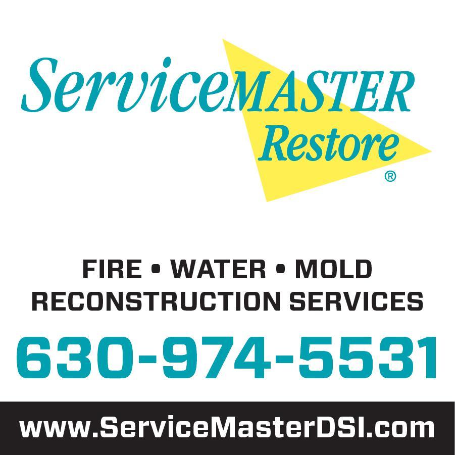 Servicemaster Dsi Downers Grove Illinois Il
