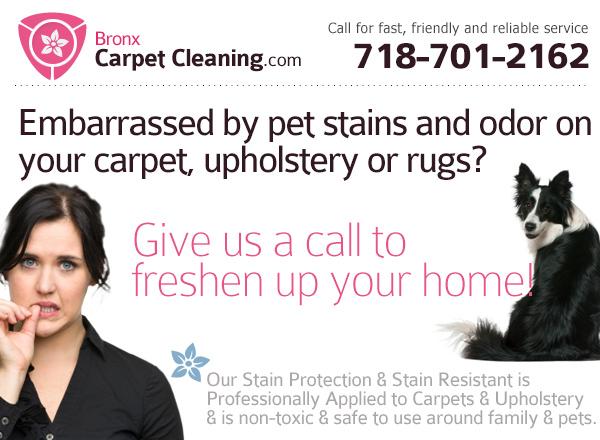 Carpet Cleaning Bronx image 3