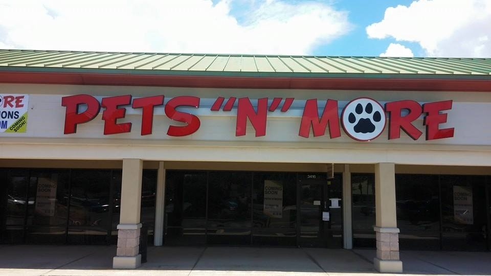 Pets n more palm harbor florida fl for A touch of class pet salon