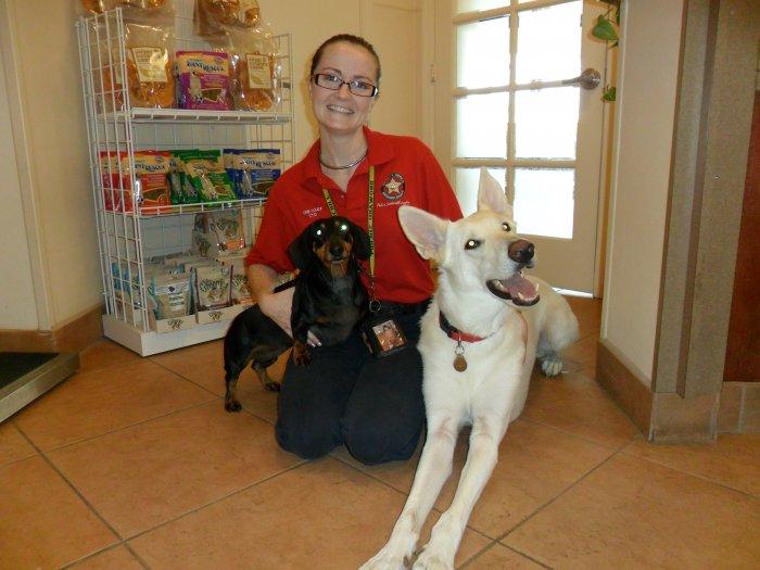 Animal Hospital In Pompano Beach Florida