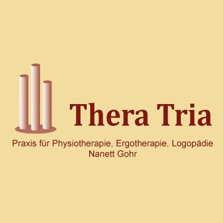 Bild zu Thera Tria - Praxis für Physiotherapie, Ergotherapie, Logopädie in Rietschen