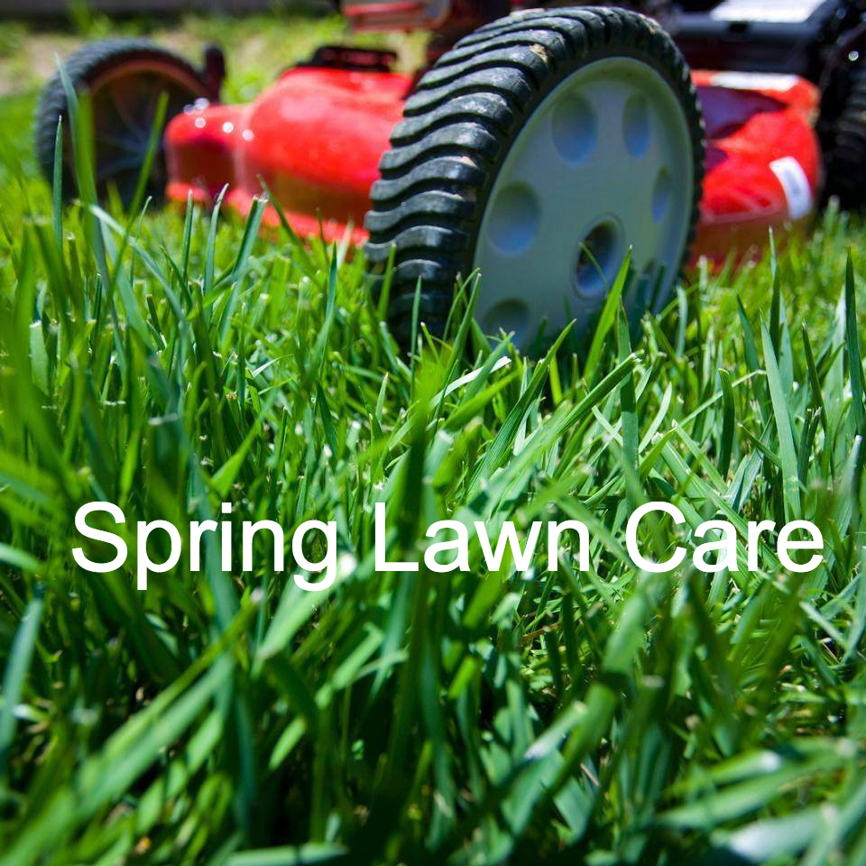 Spring lawn care swartz creek michigan mi for Local lawn mowing services