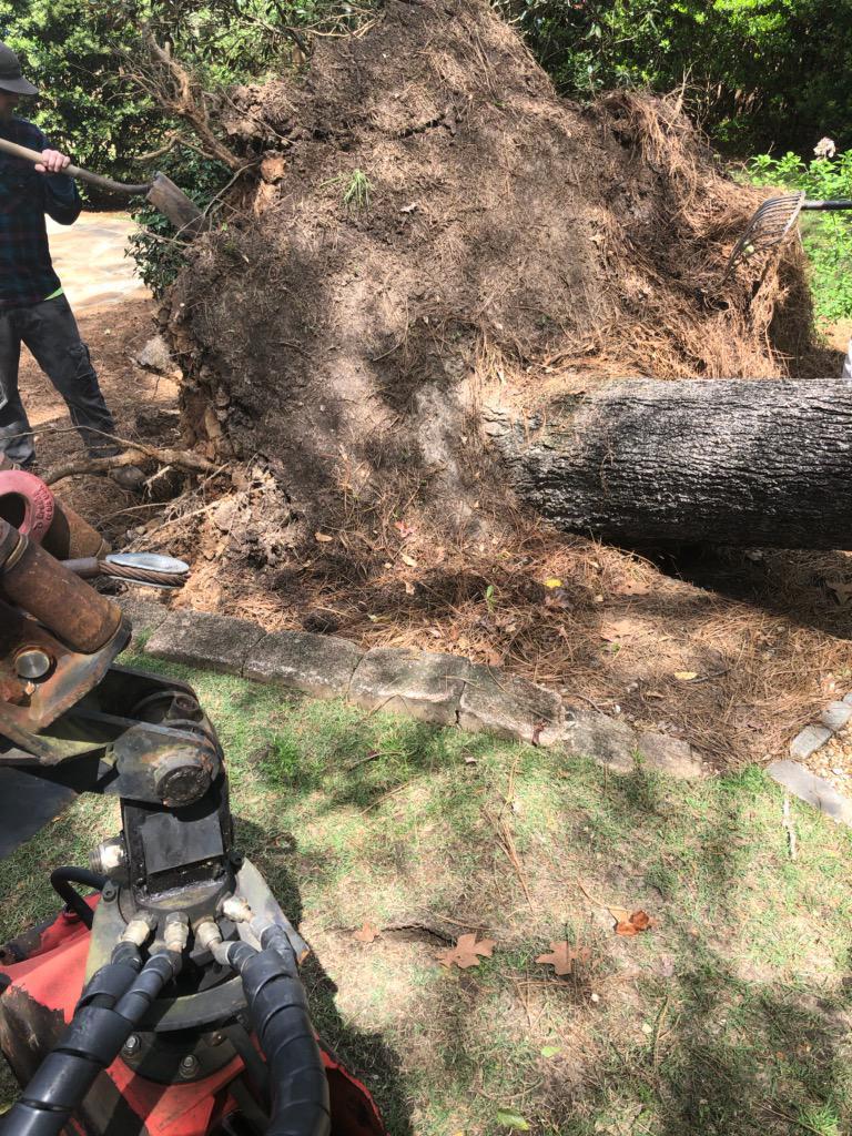 Montgomery Inc. Tree Service