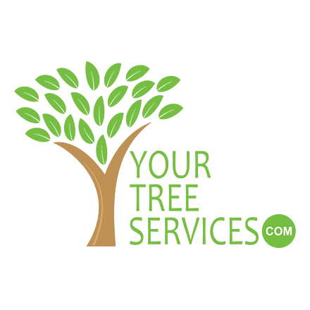 YourTreeServices.com, LLC