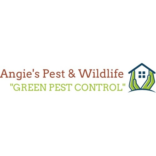 Angie's Pest and Wildlife Control - Bowie, MD 20715 - (202)831-4313 | ShowMeLocal.com