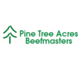 Pine  Tree Acres - Hope, AR 71801 - (870)703-5313 | ShowMeLocal.com