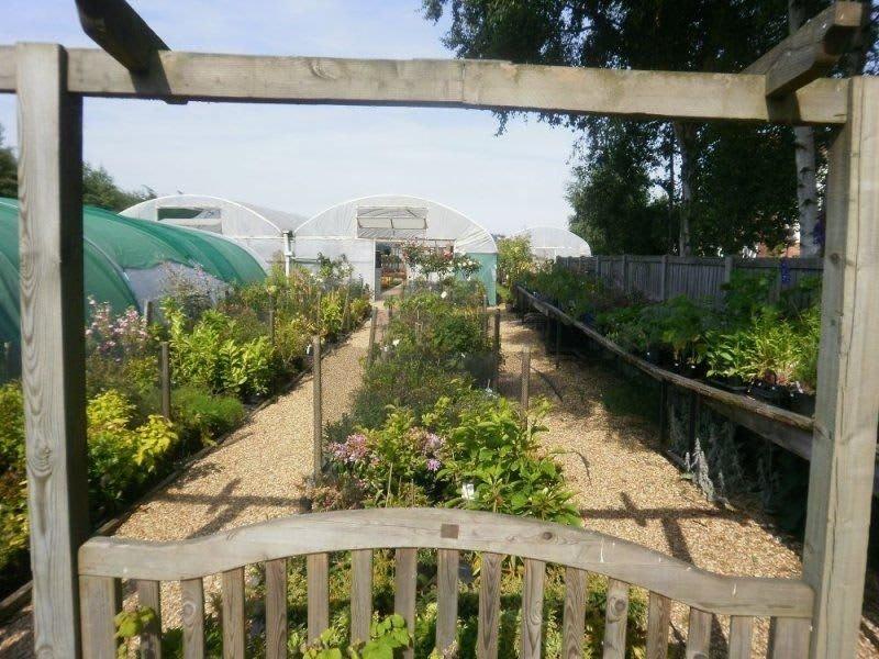 Holwood Nursery