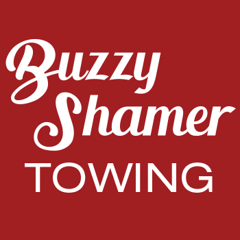 Buzzy Shamer Used Car Parts