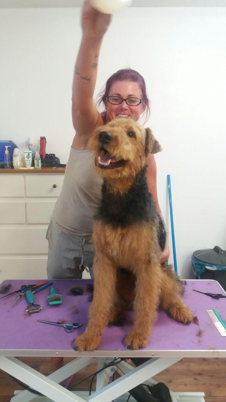 Hundefriseur Andrea Mattsee - Dogswell