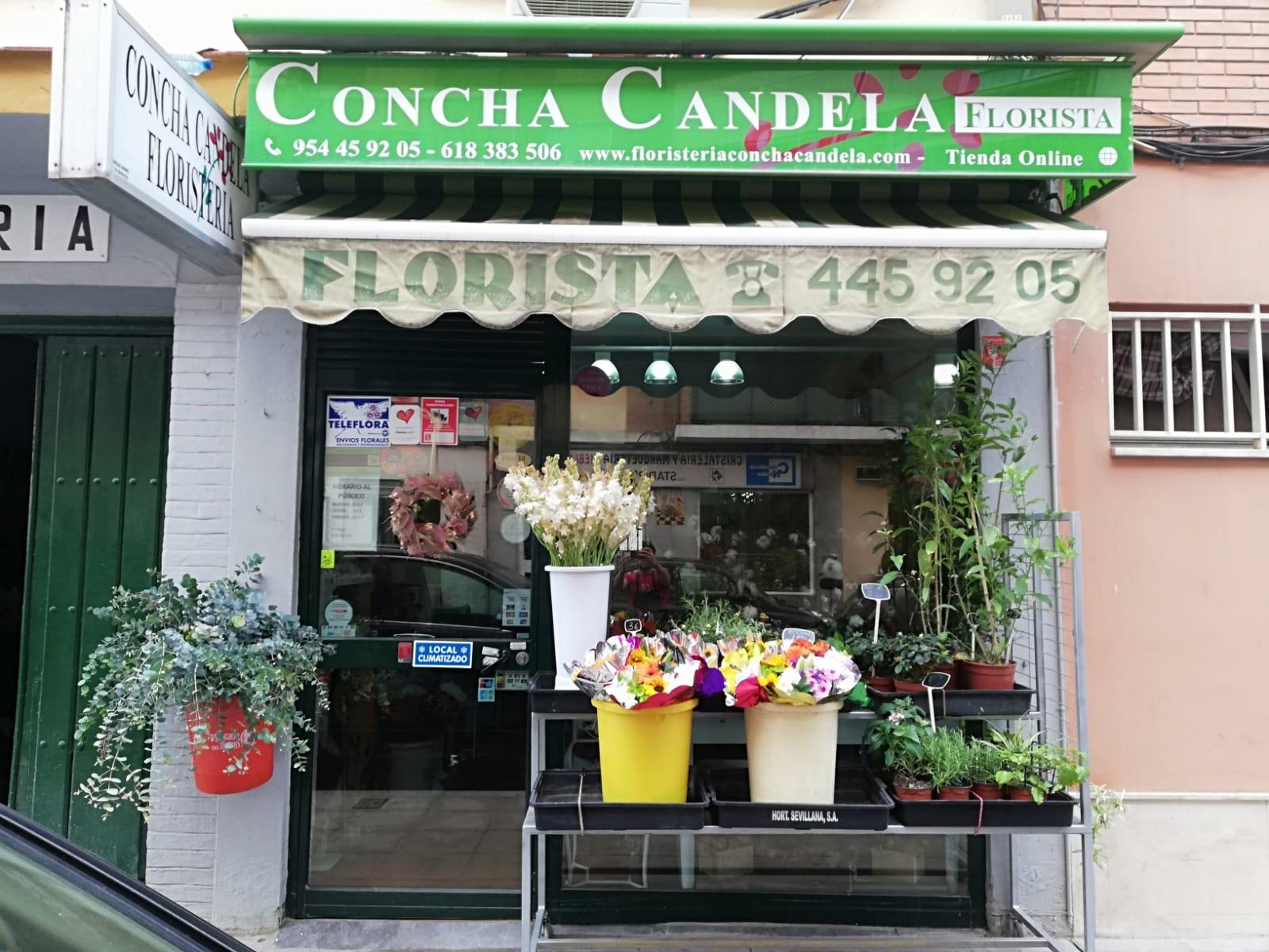 Floristería Concha Candela