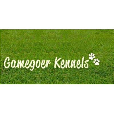 Gamegoer Kennels - Kidlington, Oxfordshire OX5 3DU - 01869 350822 | ShowMeLocal.com