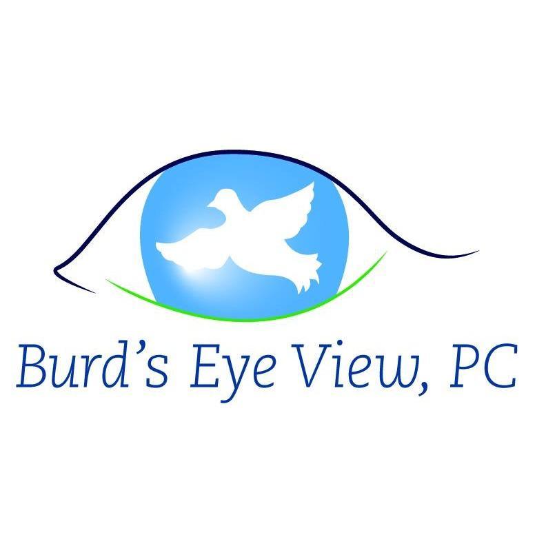 Burd's Eye View PC